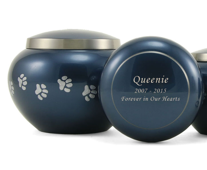 Odyssey Paw Moonlight Blue
