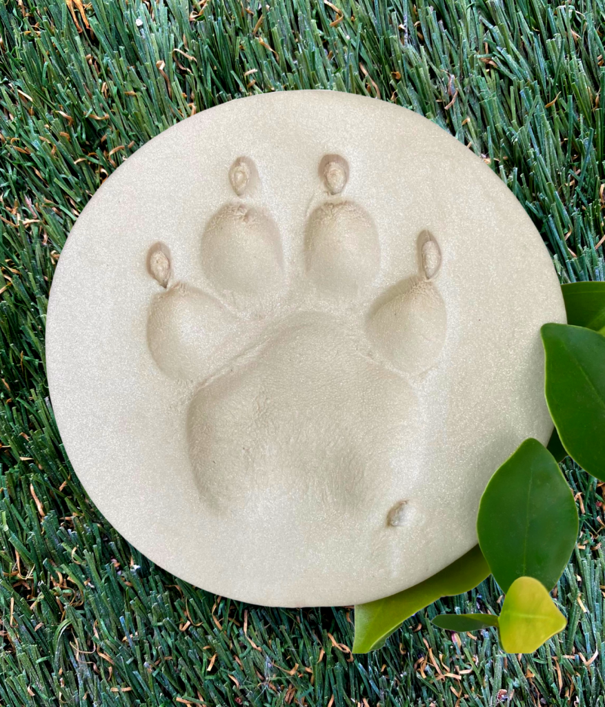 Clay Paw print for pets